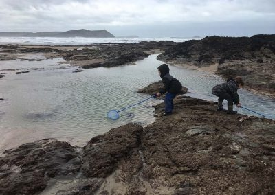 Rockpooling with nets