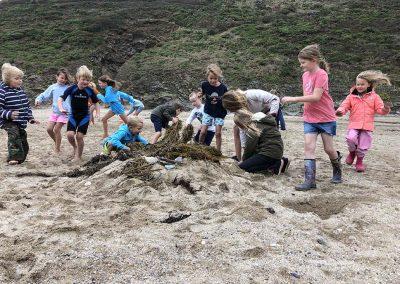 Wild Cornish Crew summer 2019 image 3